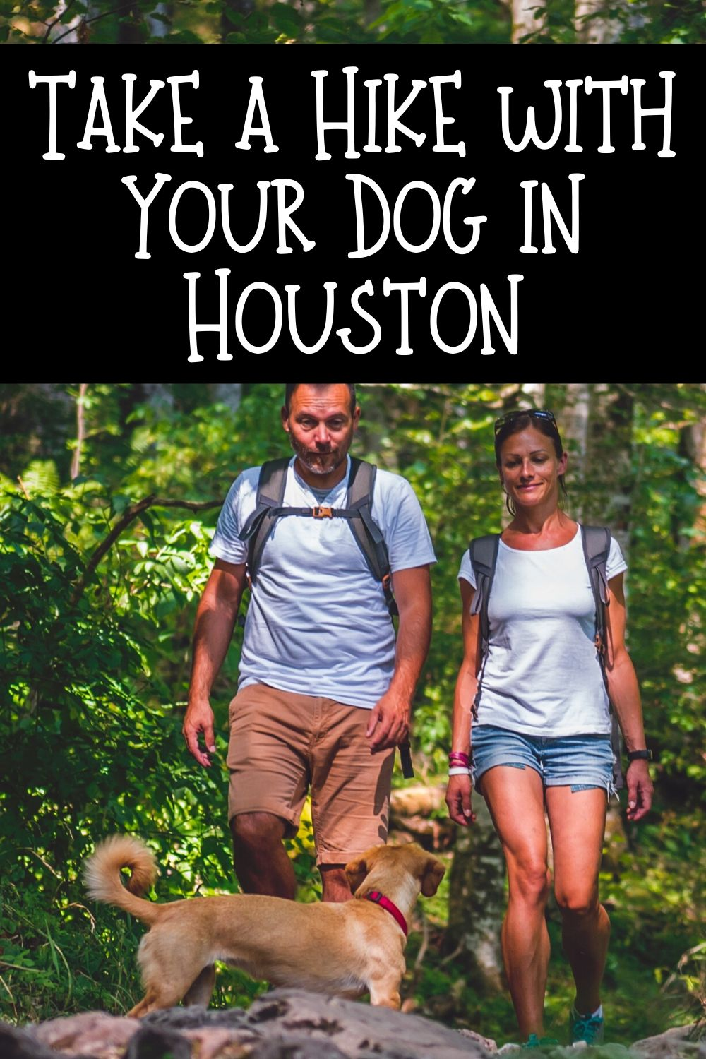Are you looking for a reason to get out and enjoy the beautiful weather here in Houston? These Houston hiking spots you can visit with your dog will do the trick!